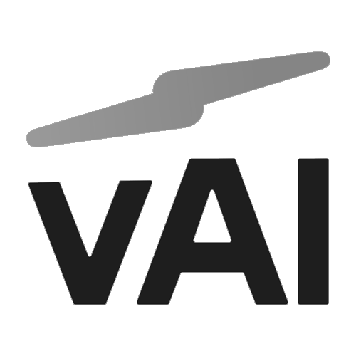 VAI Logo